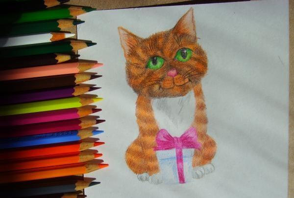 pictează pisica