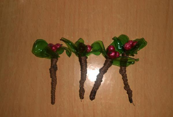 Borówka brusznica