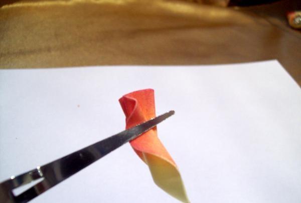 Vi arbejder fortsat med kronbladene