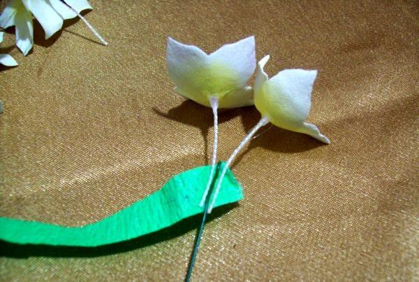 lim med et grønt bånd