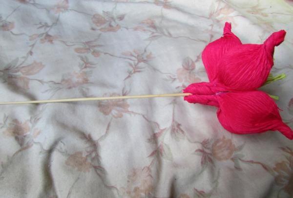 pluk en blomst