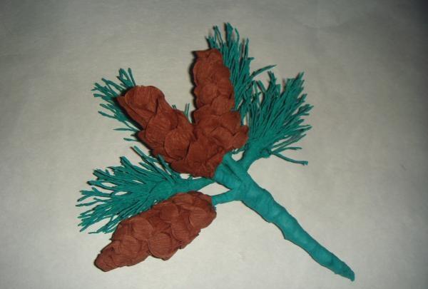 Kvist med gran med kegler