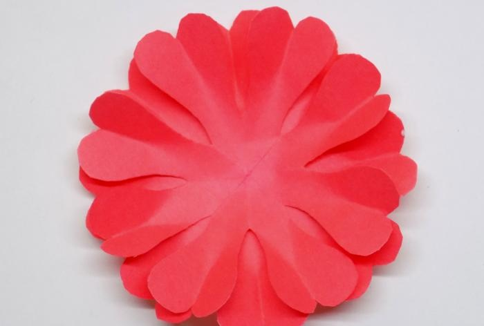 Bujny kwiat kół