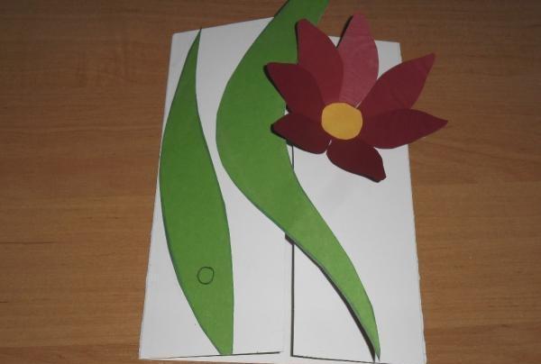 cani pentru flori