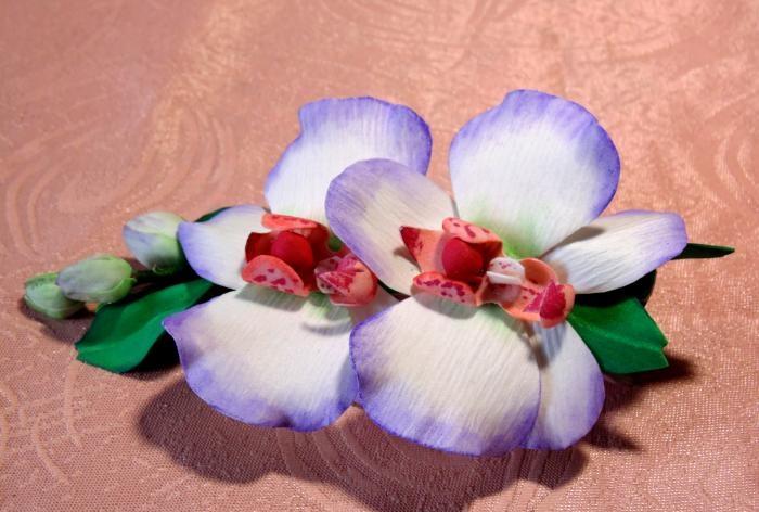 Master sınıfı kelepçe Orkide