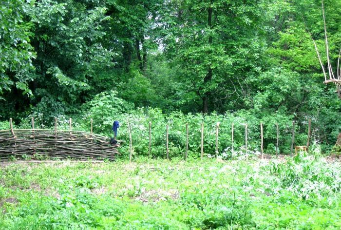 Making a wicker fence