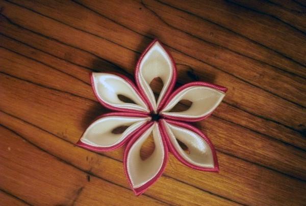 lipici la marginile petalelor