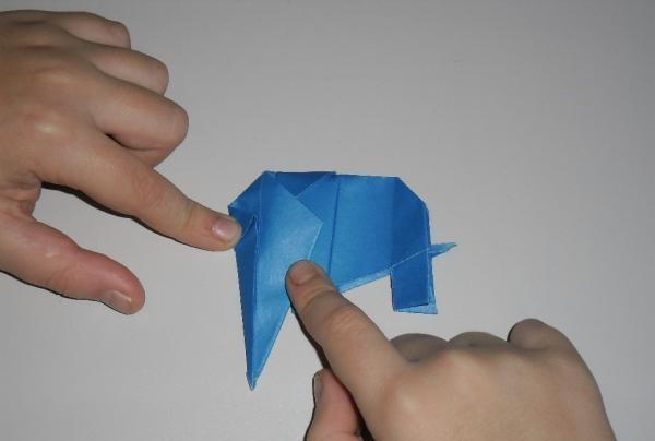 face elefant