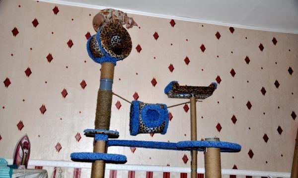 Kotedžas būsto katei