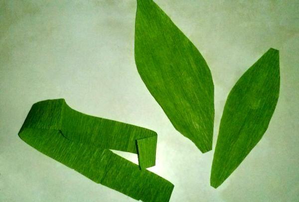 tulpină verde și două frunze