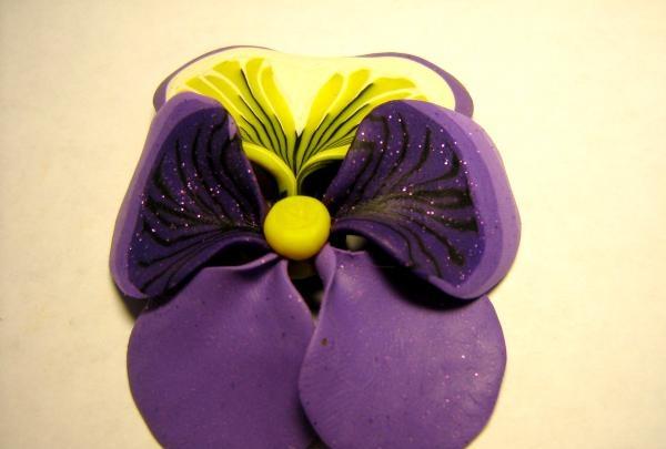 našlaitė gėlė