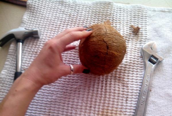 cracare de cocos