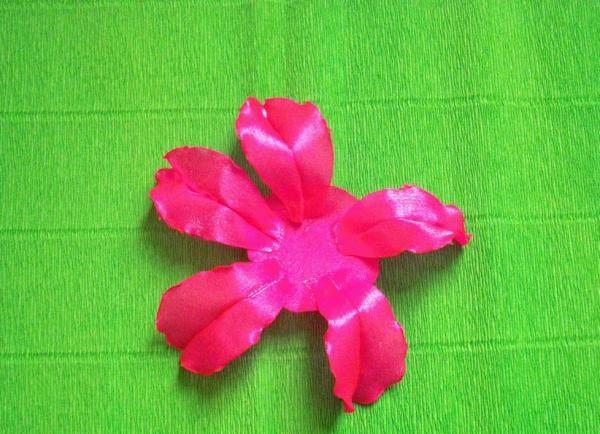 lipici petalele la bază