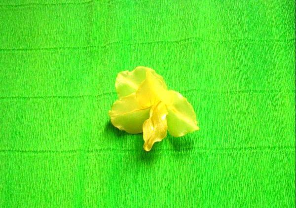 lipiți o petală galbenă