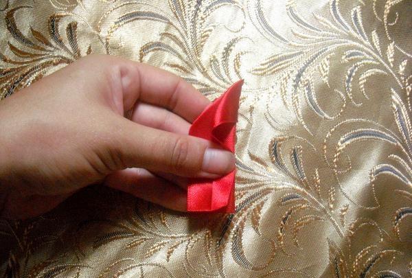 ผมยืดหยุ่นคาร์เนชั่นสีแดง