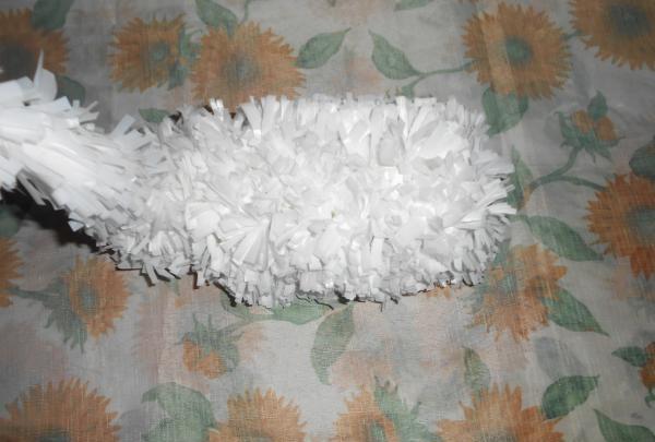 casket swan