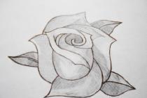 Narysuj różę
