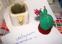 Cactus tricotat