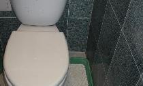 Έξυπνος και βολικός τρόπος για να γεμίσετε την τουαλέτα της γάτας σας
