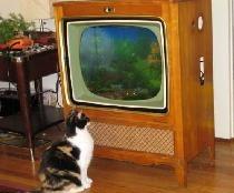 Fra det gamle tv
