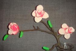 Sprig of magnolia