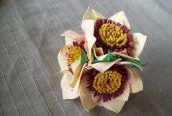 Gummi anemoner