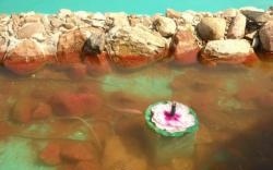 Dekoratif havuz filtresi