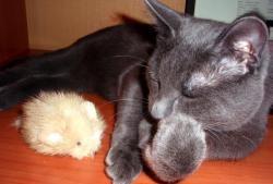 Кожена играчка за мишка за котка