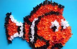"""Pestele """"Nemo"""" în tehnica tunderii"""
