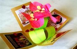 Cutie cu o orhidee surpriză