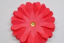 Буйно цвете на кръговете