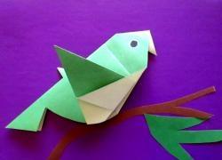 Kağıttan bir kuş nasıl yapılır