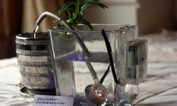 Dispozitiv de udare automată a plantelor