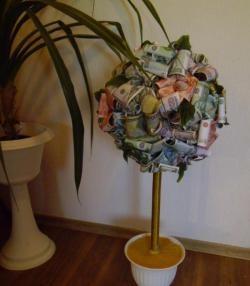 Para çiçeği