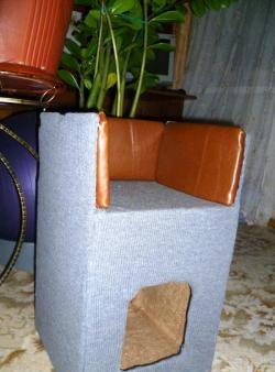 Jak zbudować domek dla kota