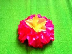 ดอกบัวฮาวาย