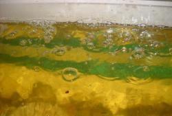 Хоризонтален филтър за малък аквариум