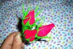 Giấy hoa hồng Bud Bud