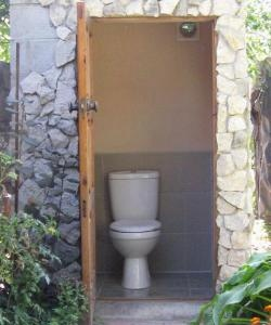Toilet in the garden