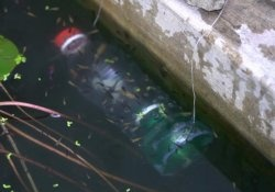 Fishing with a plastic bottle