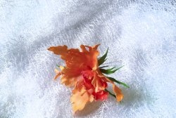 Орхидея - коледна украса за коса