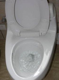 Πώς να καθαρίσετε μια φραγμένη τουαλέτα χωρίς ένα έμβολο