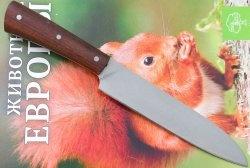 Afiar uma faca de cozinha em uma máquina caseira