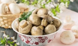 Quick pickled champignons in 1 day