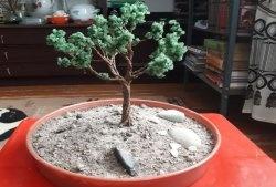DIY bonsai ağacı