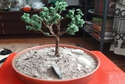 Arborele bonsai DIY
