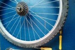 Dismantling, prevention and assembly, rear hub and ratchet