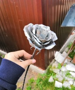 Do-it-yourself steel rose