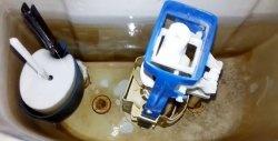 O modalitate rapidă și 100% de a elimina vasul de toaletă care se scurge