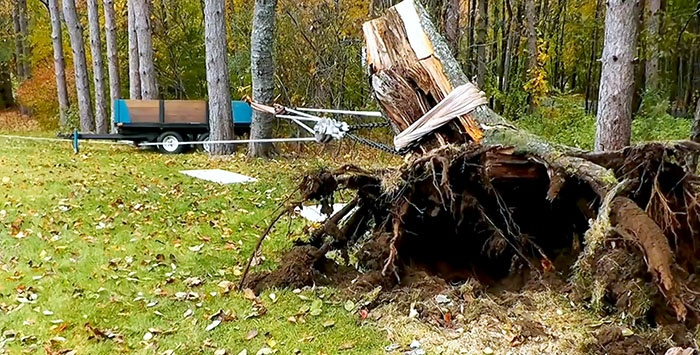 How to quickly uproot a large stump with a minimum of effort